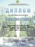 ДИПЛОМ Стрельченко Гагарин