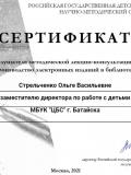 Стрельченко-электр-издания1